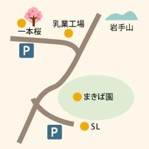 一本桜場所